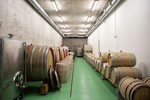 dřevěn sudy na víno ve vinařství Šabata